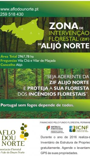 Zona de Intervenção Florestal